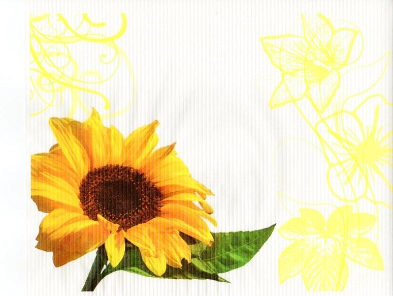 paper-placemats-girasole-tovagliette-carta-kraft-30xz40